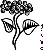 Vector Clipart graphic  of a grape vines