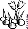 Vector Clip Art picture  of a tulips