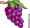 Red grapes Vector Clipart image