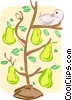 Vector Clip Art picture  of a pear tree