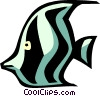 angel fish Vector Clipart picture