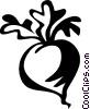 Vector Clip Art image  of a radish