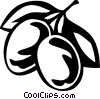 Vector Clipart image  of a plums