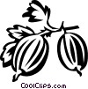 Vector Clip Art image  of a gooseberries