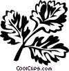 coriander Vector Clipart illustration