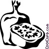 pomegranate Vector Clip Art graphic