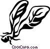 horseradish Vector Clipart picture
