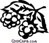 Vector Clipart graphic  of a wild berries