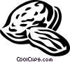 Vector Clip Art picture  of an almond
