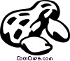 peanut Vector Clip Art graphic
