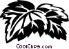 Boston ivy Vector Clip Art picture