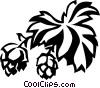 Vector Clip Art image  of a hops