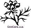 Vector Clip Art picture  of a coriander