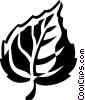 Vector Clip Art image  of a poplar