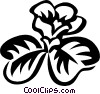 Vector Clip Art image  of a wood sorrel