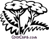 Vector Clipart image  of a yarrow