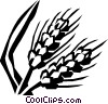 unprocessed grain Vector Clipart picture