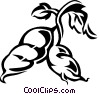 sweet potato Vector Clip Art image