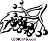 elderberry Vector Clip Art graphic