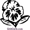 pansy Vector Clipart image