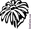 black-eyed Susan Vector Clipart illustration