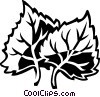 Vector Clip Art graphic  of a cottonwood
