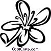 St. Johnswort Vector Clipart picture