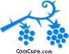 raspberries Vector Clipart picture