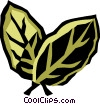 bay leaves Vector Clipart image