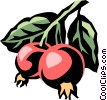 Vector Clip Art graphic  of a crabapple