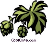 Vector Clipart picture  of a hops