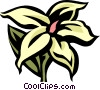 Vector Clip Art graphic  of a jasmine