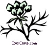 Vector Clipart graphic  of a coriander
