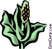 Vector Clip Art graphic  of a skunk cabbage
