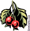 Vector Clipart image  of a service berry