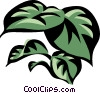 Vector Clip Art image  of a philodendron