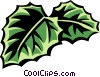 Vector Clip Art picture  of a cissus