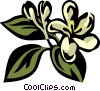 honeysuckle Vector Clipart illustration