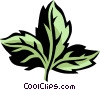 Vector Clipart picture  of an angelica