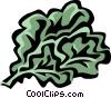 rapini Vector Clip Art picture