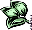 Solomon's seal Vector Clipart picture