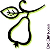 pear Vector Clipart illustration