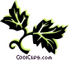 Vector Clip Art graphic  of a leaves
