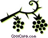 raspberries Vector Clipart graphic