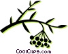 Vector Clip Art picture  of a wild berries