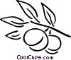 Vector Clipart picture  of a peaches