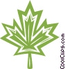 Vector Clip Art image  of a maple leaf