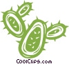 Cacti Vector Clipart illustration