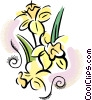 Vector Clipart graphic  of a Daffodils