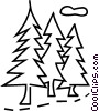 Vector Clip Art image  of a coniferous